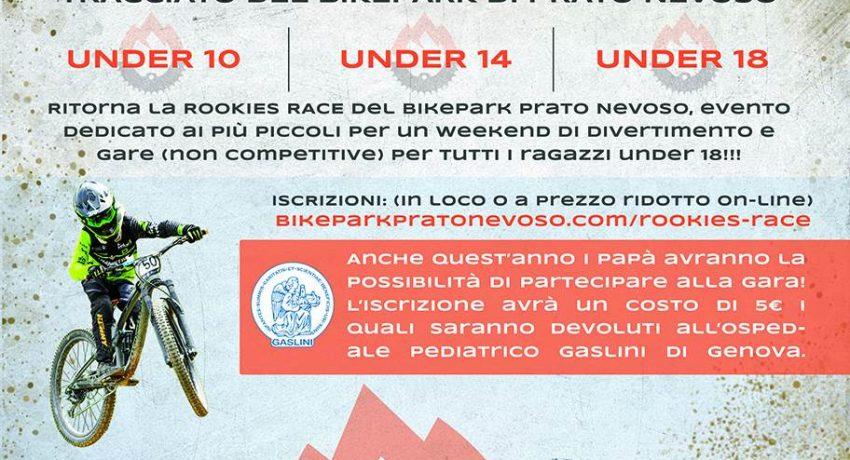 rookies-race-web